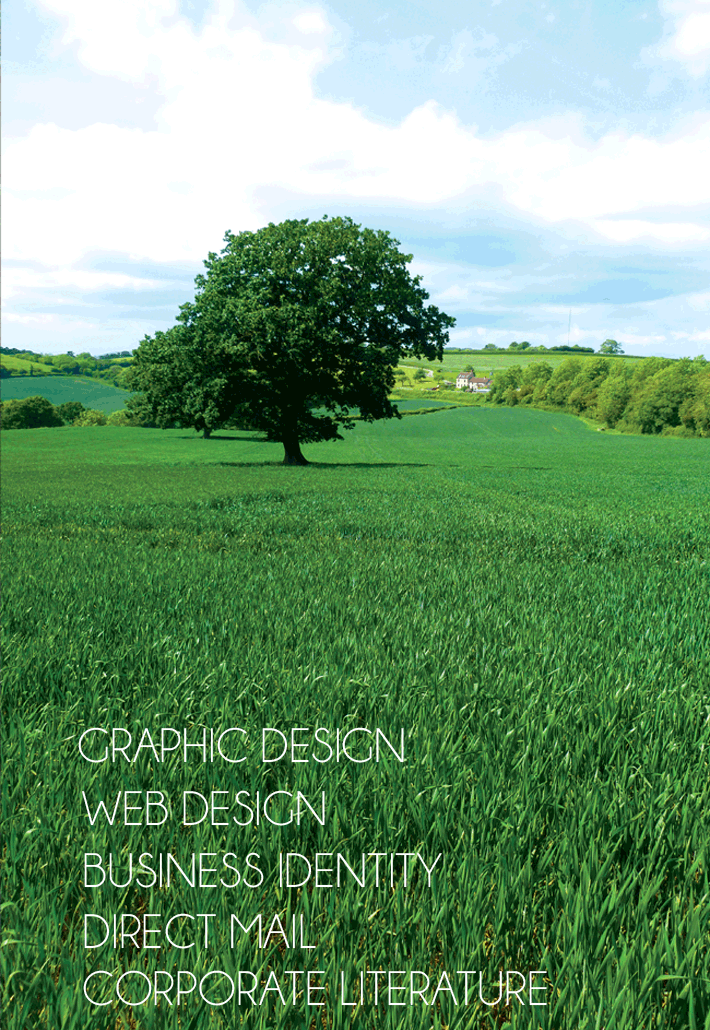 Graphic Design, Web Design, Business Identity, Direct Mail, Corporate Literature